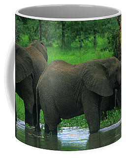 Elephant Shower Coffee Mug