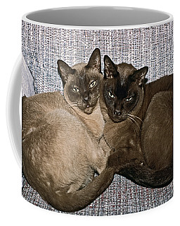 Tonkinese Pals Coffee Mug by Sally Weigand
