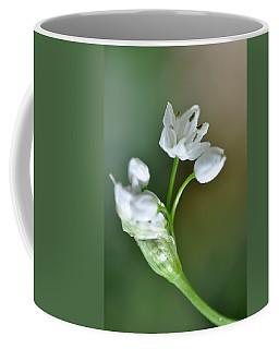 White Blossom 3 Coffee Mug