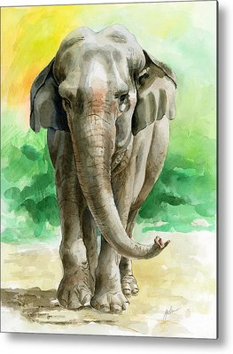 Asian Animals Metal Prints