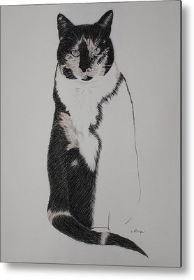Spirit Cat Essence Metal Prints