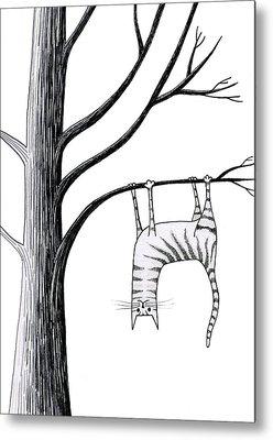 Twigs Drawings Metal Prints