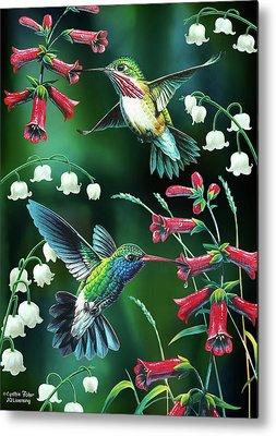 Humming Bird Metal Prints