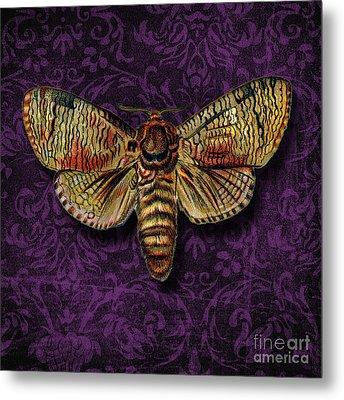 Love For Butterflies Metal Print by Ramneek Narang
