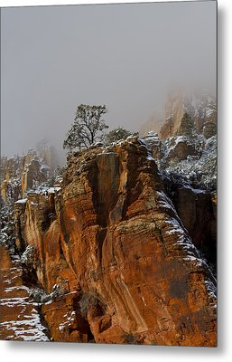 Metal Print featuring the photograph  The Lone Tree In Oak Creek by Tom Kelly