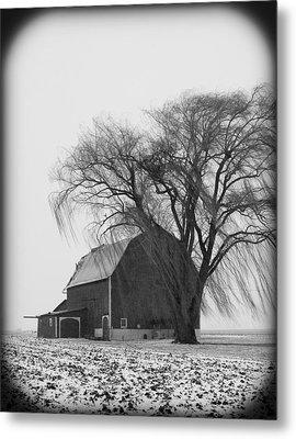 020213-67   Prairie Winter II Metal Print by Mike Davis