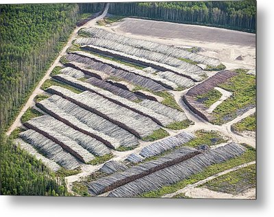 Boreal Forest Felled For A Tar Sands Mine Metal Print by Ashley Cooper