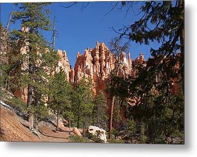 Bryce Canyon National Park Metal Print by Michael J Bauer