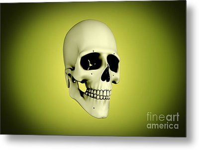 Conceptual View Of Human Skull Metal Print by Stocktrek Images
