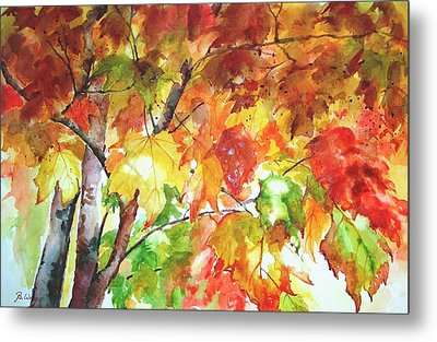 Fall Folliage  Metal Print