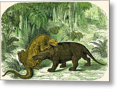 Metal Print featuring the photograph Iguanodon Biting Megalosaurus by Wellcome Images