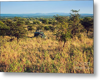 Jeep With Tourists On Safari In Serengeti. Tanzania. Africa. Metal Print by Michal Bednarek