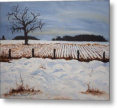 Lone Tree In Winter Metal Print by Monica Veraguth