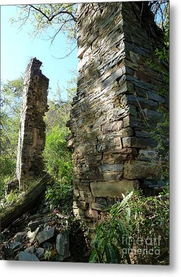 Metal Print featuring the photograph Nature's Door by Jane Ford