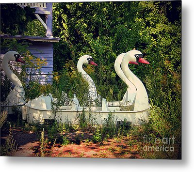 Old Swan Boats In Plaenterwald Berlin Metal Print