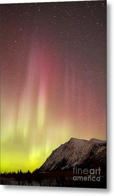 Red Aurora Borealis Over Carcross Metal Print by Joseph Bradley