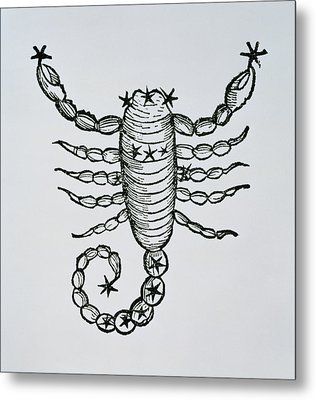 Scorpio Metal Print by Italian School
