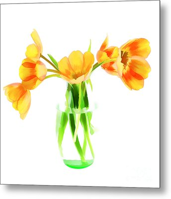 Spring Tulips Metal Print by Darren Fisher