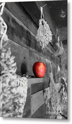 The Apple Metal Print by Laurinda Bowling