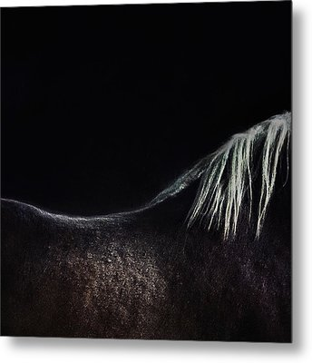 The Naked Horse Metal Print