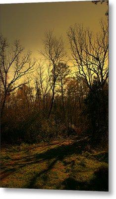 Time Of Long Shadows Metal Print by Nina Fosdick