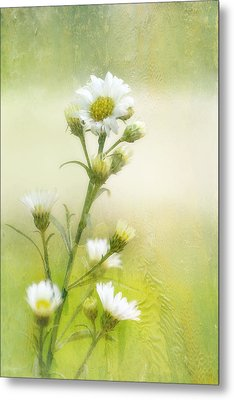 Wild Flowers Metal Print by Joan Bertucci