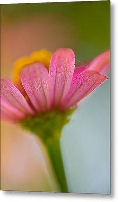 Wildflower - Bali Metal Print