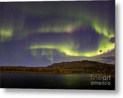 Aurora Borealis With Moonlight At Fish Metal Print by Joseph Bradley