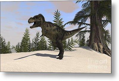 Tyrannosaurus Rex Hunting For Its Next Metal Print by Kostyantyn Ivanyshen