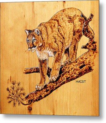 Cougar Metal Print by Ron Haist