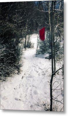 Red Glove Metal Print by Joana Kruse