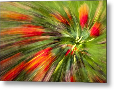 Swirl Of Red Metal Print by Jon Glaser