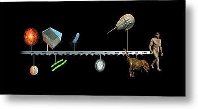 Evolution Of Earth Timeline Metal Print