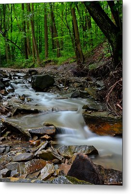 Serenity Metal Print by Frozen in Time Fine Art Photography