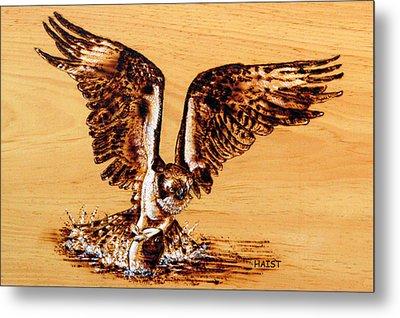 Osprey Metal Print
