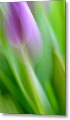 Tulip Metal Print by Silke Magino