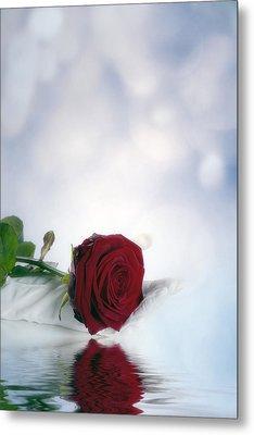 Red Rose Metal Print by Joana Kruse