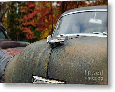 Metal Print featuring the photograph 54  by Paul Noble