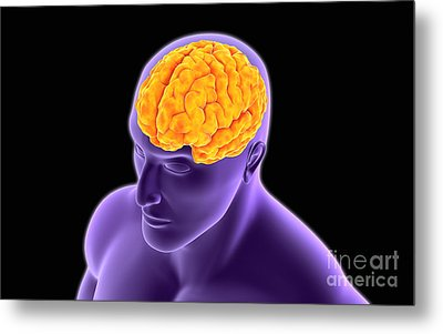 Conceptual Image Of Human Brain Metal Print by Stocktrek Images
