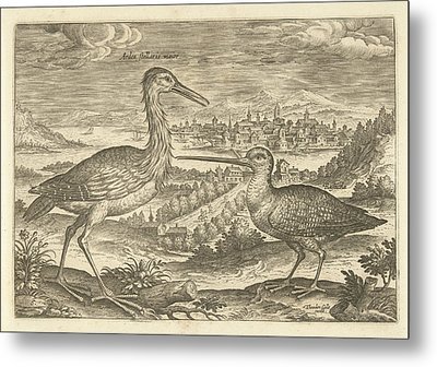 Two Birds In A Landscape, Adriaen Collaert Metal Print