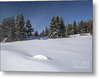 Beautiful Winter Landscape Metal Print by IB Photo