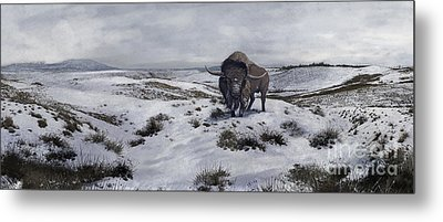 A Bison Latifrons In A Winter Landscape Metal Print by Roman Garcia Mora