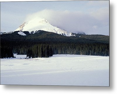 A Cold Wind Metal Print by Brent L Ander