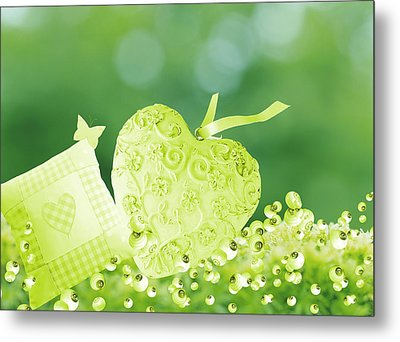 A Cushion And Lonely Heart In The Garden Metal Print by Grace  Olsson