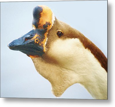 A Face Only A Mother Could Love Metal Print by Paulette Thomas