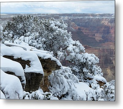 A Foot At The Canyon Metal Print by Laurel Powell