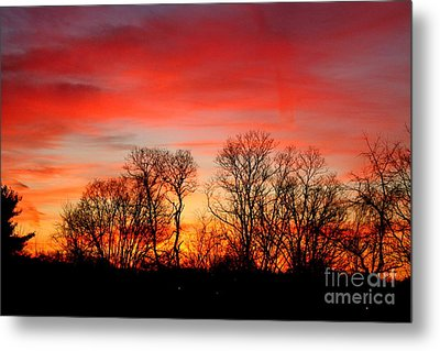 A Glowing January Sunrise Metal Print by Jay Nodianos