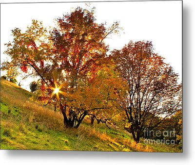 A Golden Glowing Autumn Sunset Metal Print by Jay Nodianos