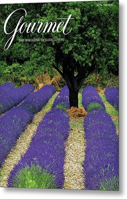 A Gourmet Cover Of A Lavender Field Metal Print