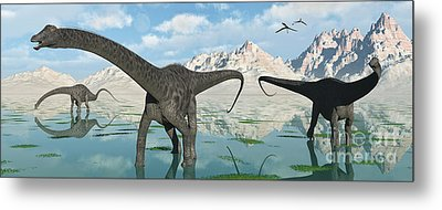 A Group Of Diplodocus Dinosaurs Grazing Metal Print by Mark Stevenson